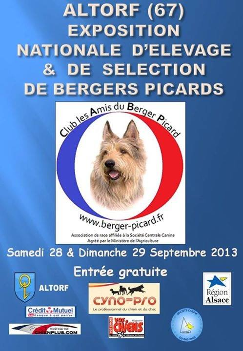Nationale Elevage Berger Picard 2013