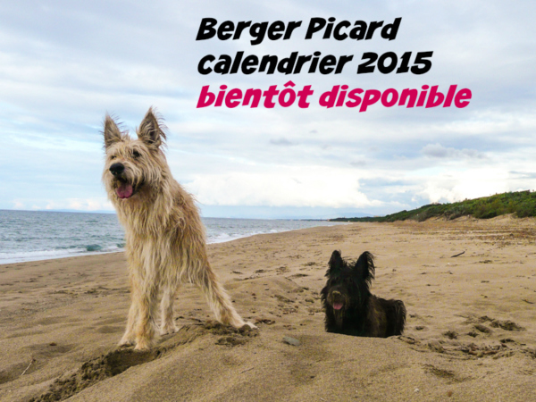 calendrier 2015 berger picard